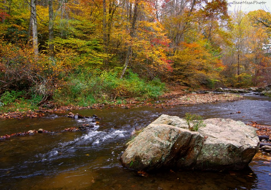Doe River autumn