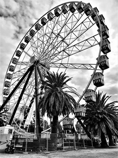 Giant Sky Wheel Geelong