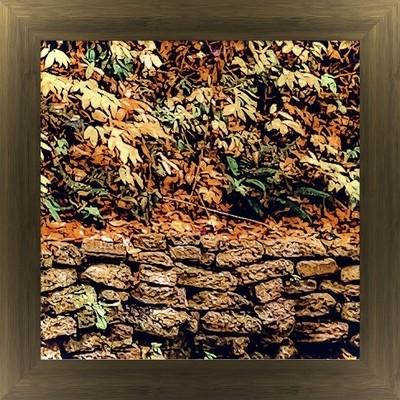 Wall Full of Fall