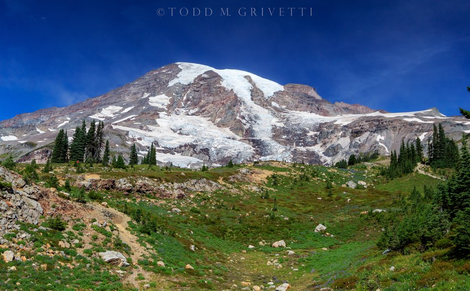 Mt. Rainier in full view. This was taken from VanTrump park during one of our hikes in the park i...