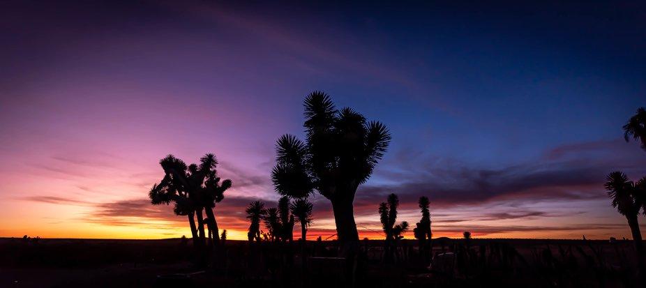 Semi deser sunset