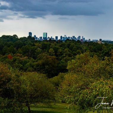 Boston from the Arnold Arboretum