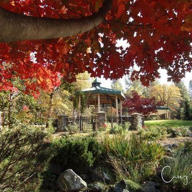 Bille Park in Autumn