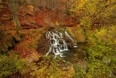 Spot near the waterfall...