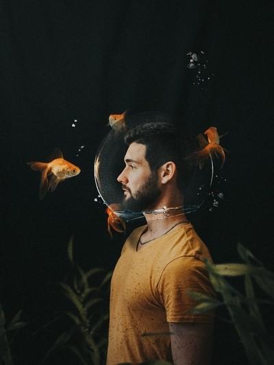Like a gold fish creative photography