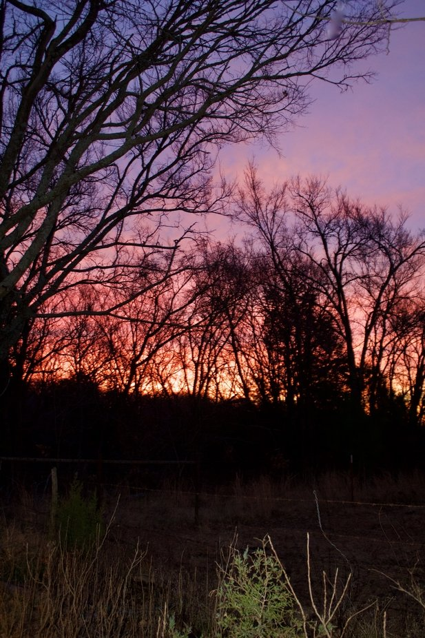 The sunrise seen from Jensen Ranch in Atwood Oklahoma. My hometown.