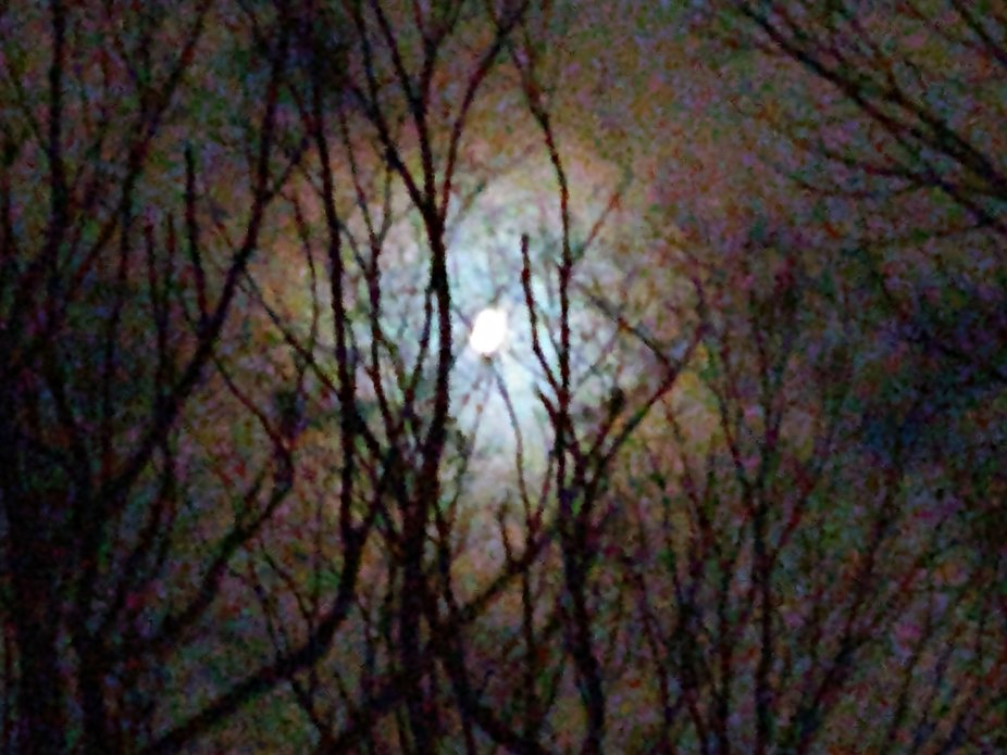 Walking up a strep hill in an attempt to capture the conjunction the moon caught my eye and I jus...