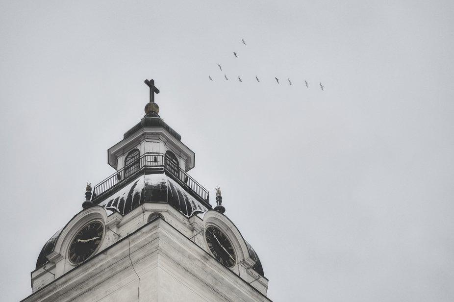 Church meets birds