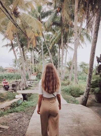 A walk in the rice fields