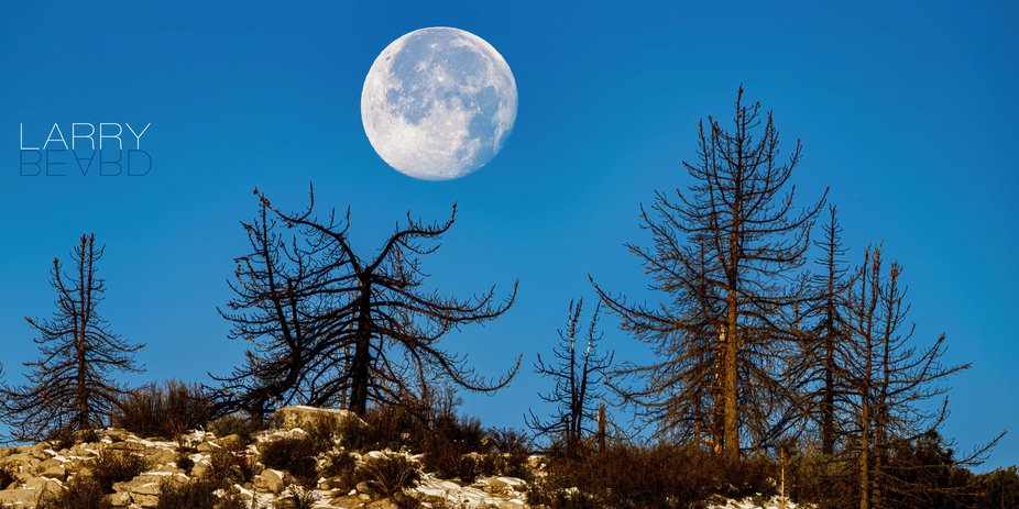 One thing that is challenging when trying to have the moon large in an image is getting the spaci...