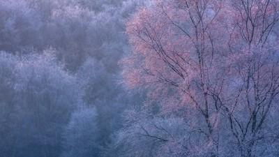 First Frozen Light