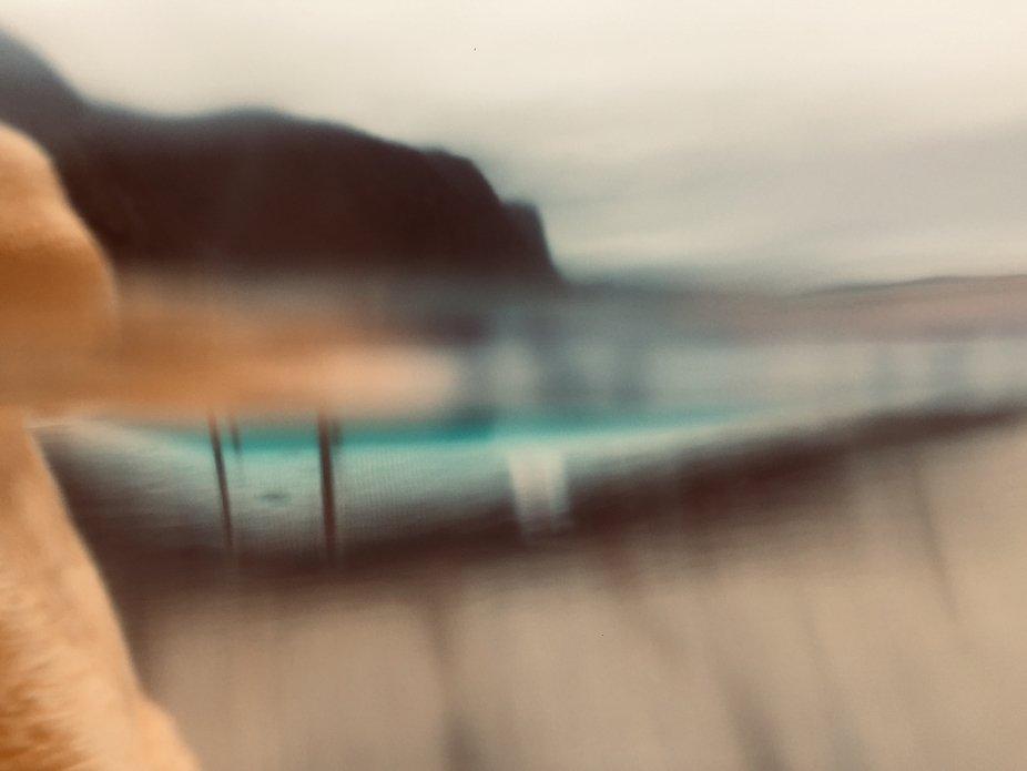 swim dream