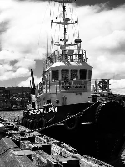 Wellington Harbour NZ