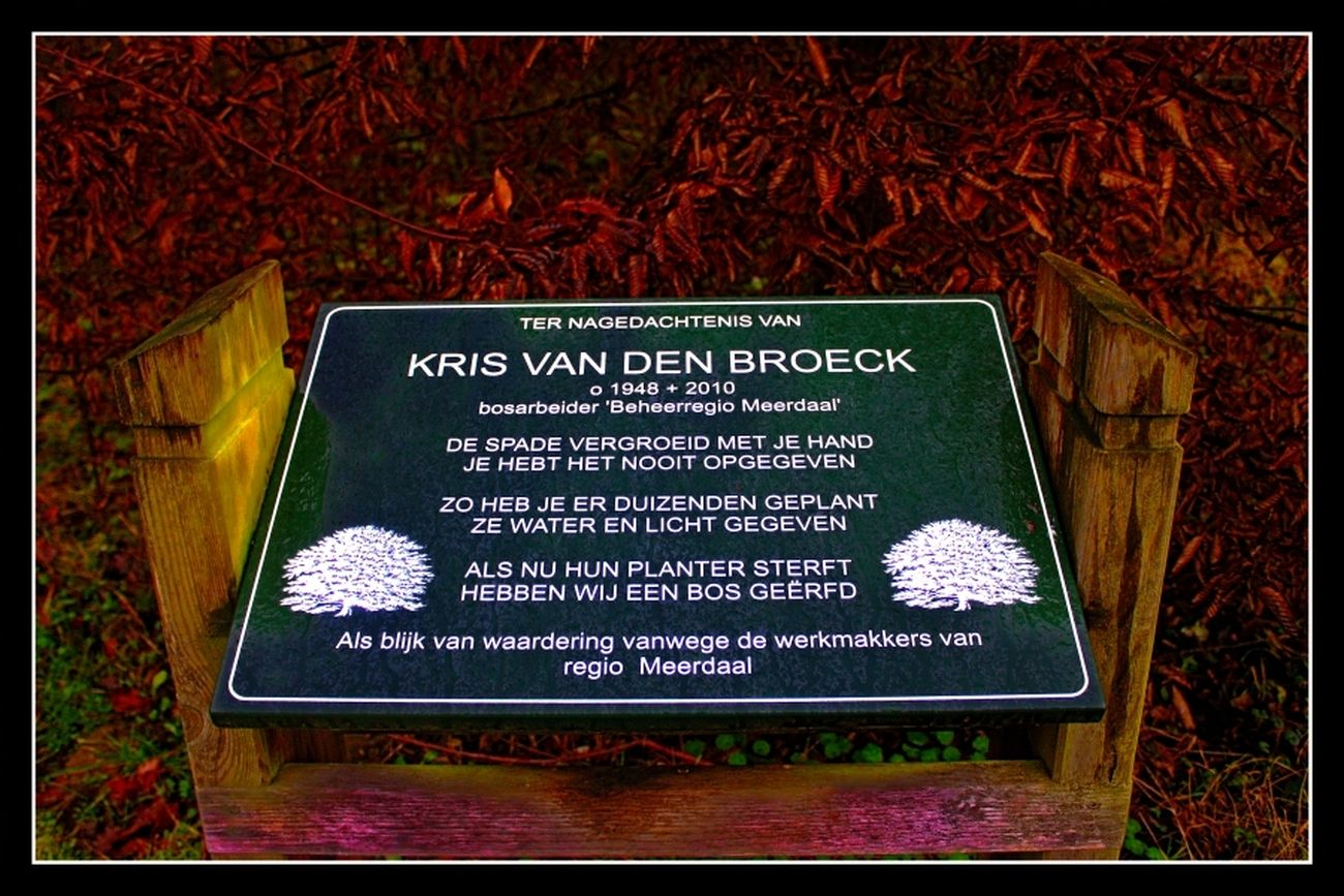 Nature walk Meerdaal forest Even though the beauty of the autumn colors had disappeared, and there was no snow carpet yet, I thought it was worth taking these photos. This beautiful memorial plaque in memory of one of the maintenance workers of Meerdaalwoud Otherwise it is already dark, but today it was unfortunately even darker due to the clouds Theo-Herbots-Journalist-Photography https://groetenuittienen.blog/