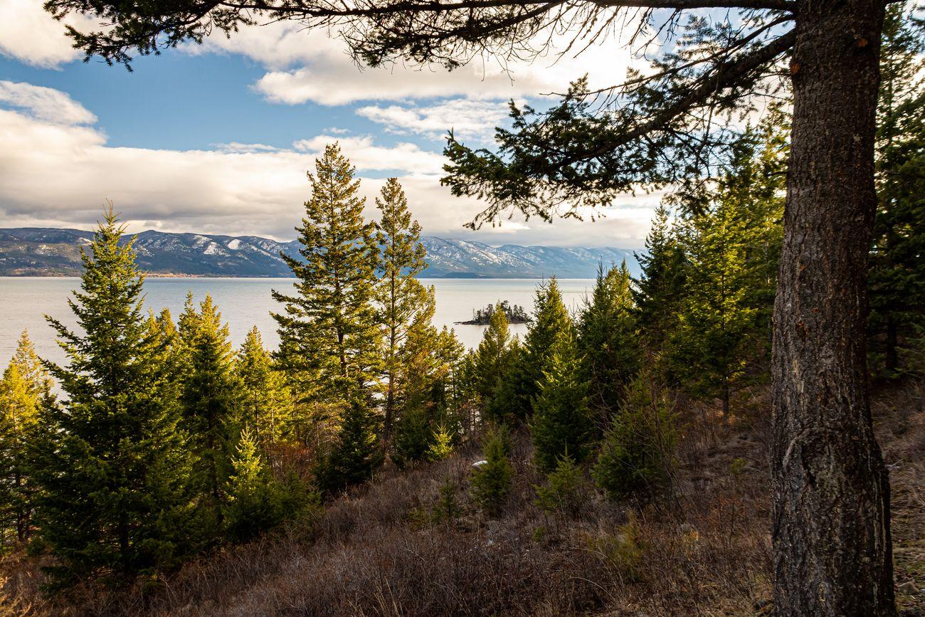 Flathead Lake Overlook