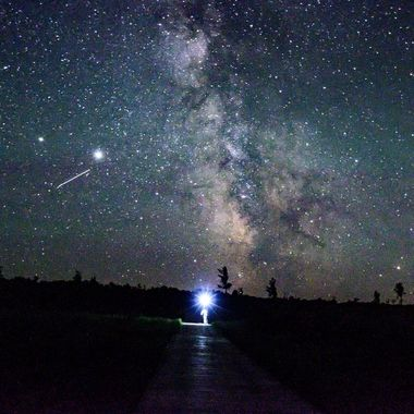 Shot this using timed shutter release on the Tilson Bay Bog Walk in July
