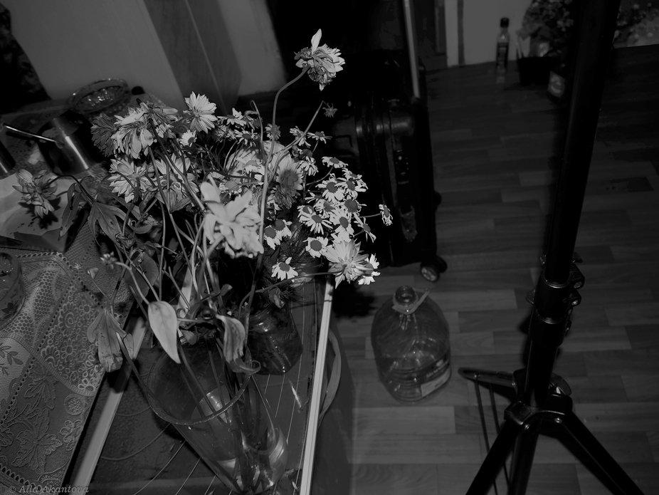 Photographer Room