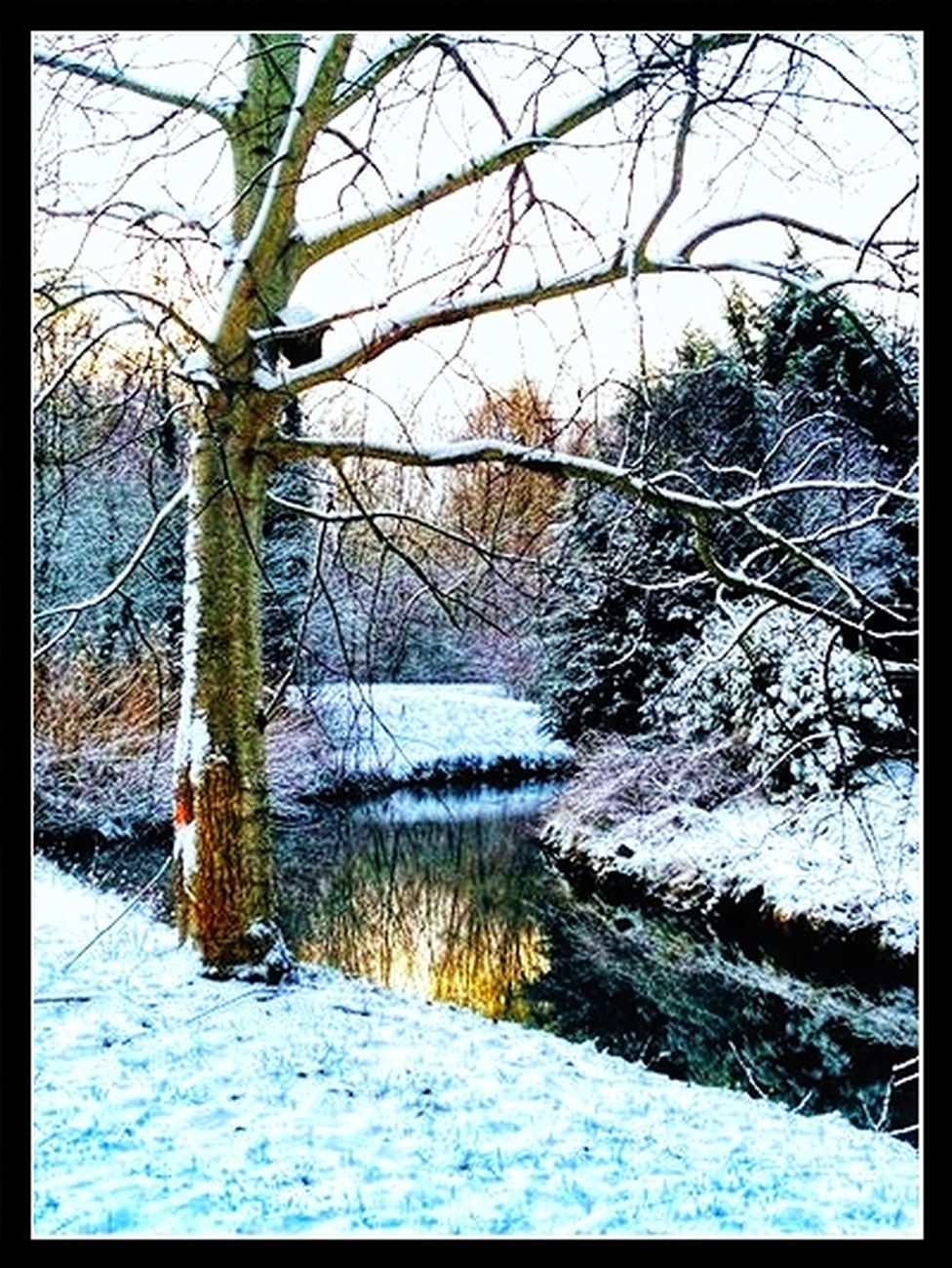 Winter in Tienen. February 16, 2021 Due to the warming of the climate, it has not snowed in Tienen for a long time. The photos may not be like other winter landscapes Theo-Herbots-Photography https://groetenuittienen.blog/