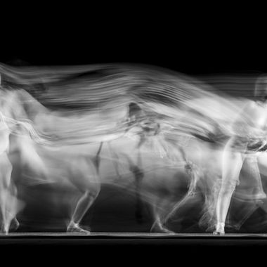 Long exposure with dancer and skeleton. 