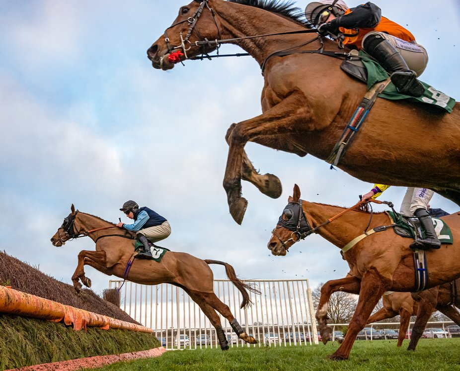 National Hunt racing: the final fence of a steeplechase.