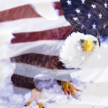 Eagle Flag overlay, did it right on my camera. If you haven't already, check out the overlay button on your Nikon and let your imagination run wild!!!