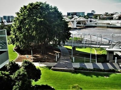 Brisbane River Scene