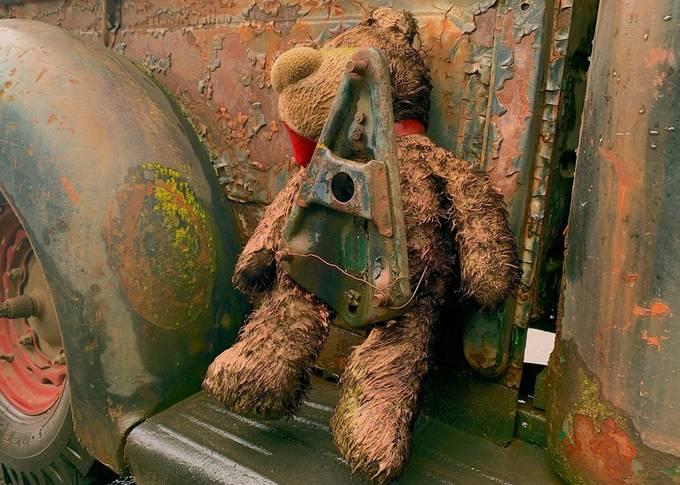 Bearly Truckin'
