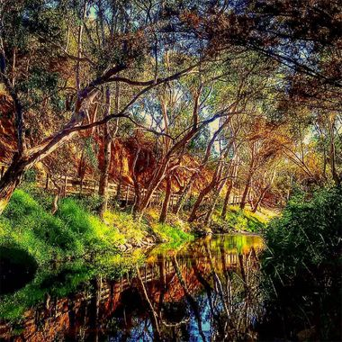 A walking trial that leads you straight to the city [Adelaide, SA] with lovely view of its natural surroundings.  Definitely worth your valuable time