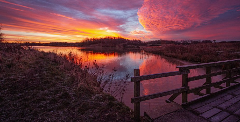 """An early hours walk around the local Country Park.  Spooking Herons, """"Wheel Spinning&..."""