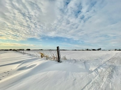 Snowy Fields #winter