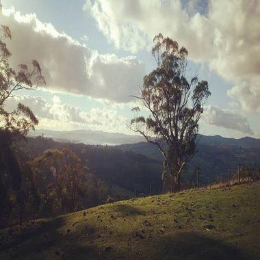 Taken at Grindelwald, Tasmania, 15 Km away from Launceston