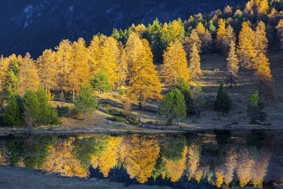 Tarasp-Lac noir