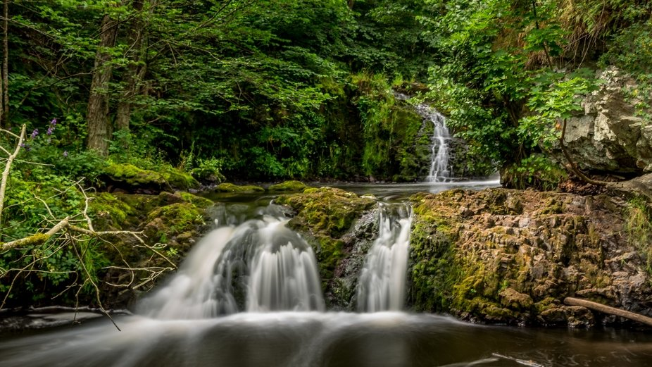 Waterfall in the forest