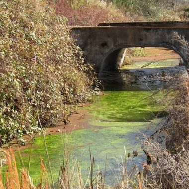 Green flume