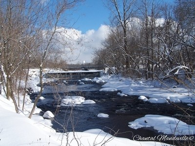 The Cold River