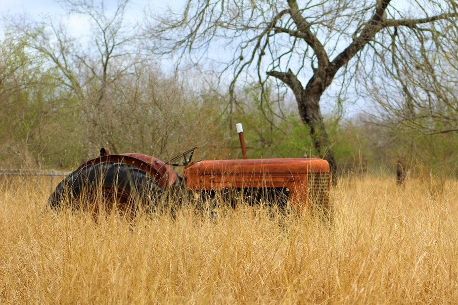 An old abandoned tractor in a overgrown pasture near a house.