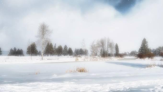 Snow with a GLOW