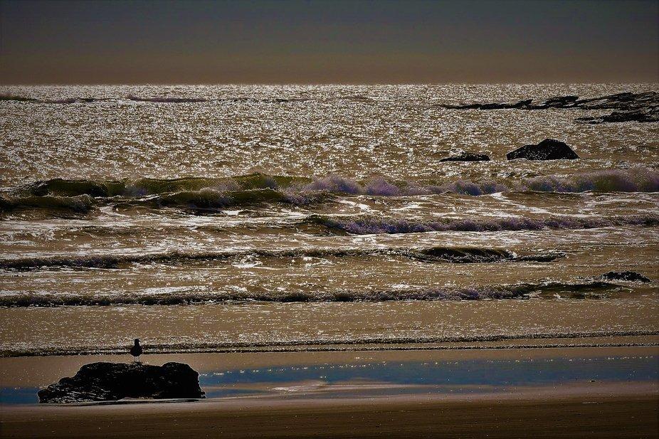 Sparkle on The Ocean