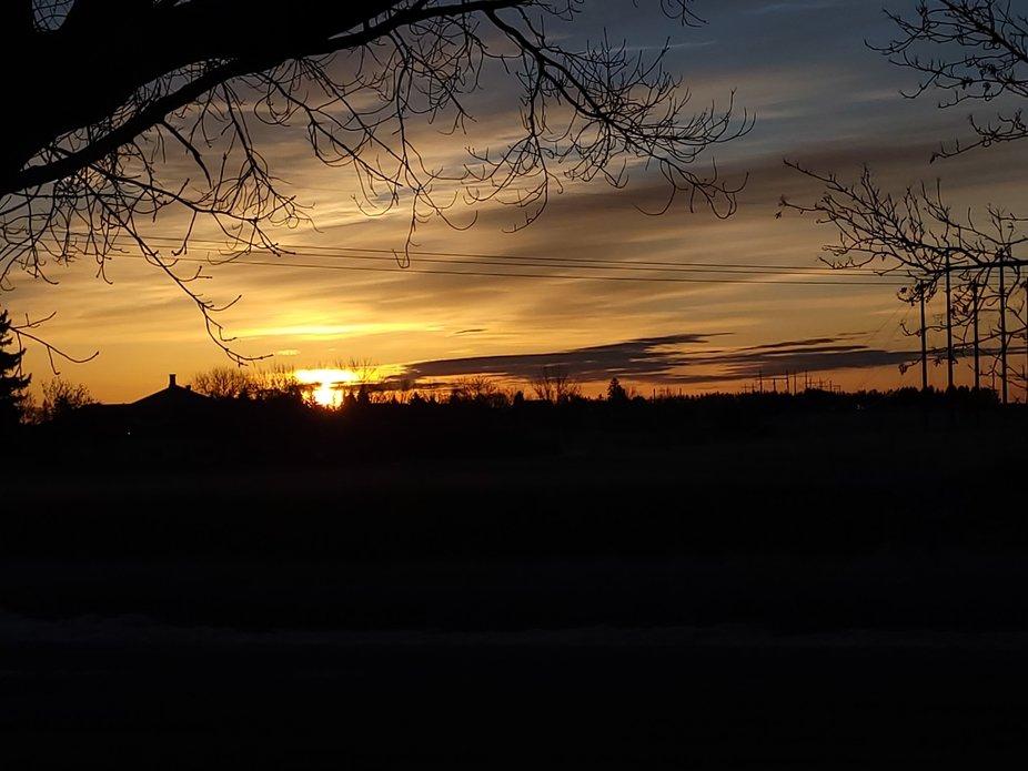 sunrise in greys