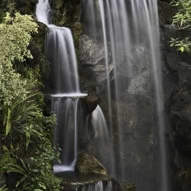 It is Spring time and it is beautiful to take a walk at the Los Angeles County Arboretum.  This waterfall, though man-made, is the favorite of most visitors.  The light condition was perfect for a 4-second timed shot using a neutral density filter.  So blessed!