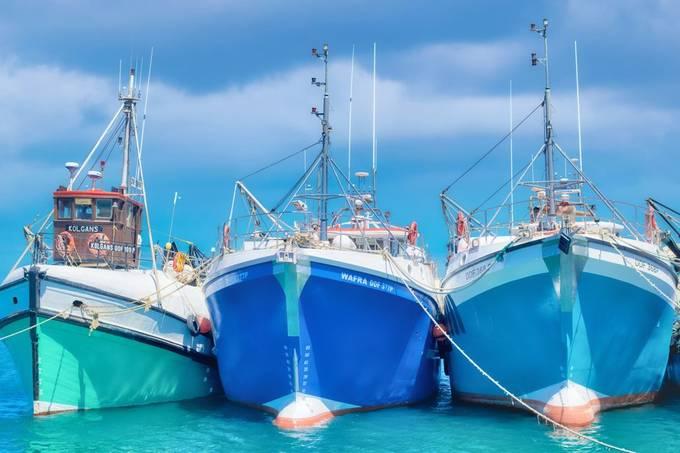 boats at Gansbaai Harbour