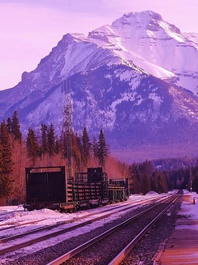 11470b   Rail Cars in Banff
