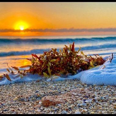 Stuart FL Sunrise 3-15-21