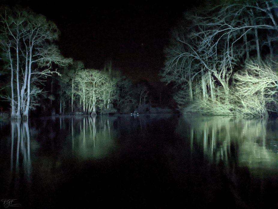 Portion of the Ebenezer Creek lit up with spotlights while kayaking at night.