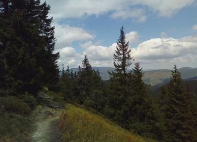 Jeseníky mountains