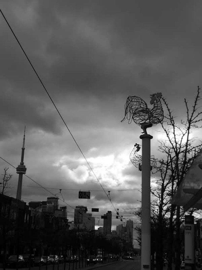 CN TOWER EVERYWHERE  By Yannis Lobaina