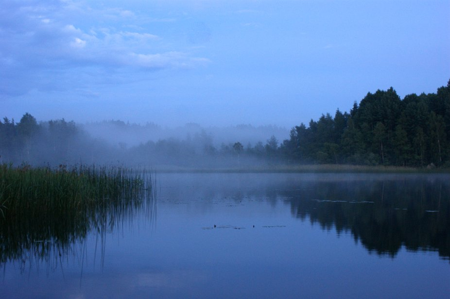 The mist at early morning