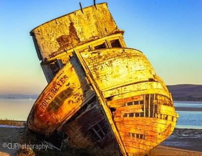 Ship Reck, Point Reyes
