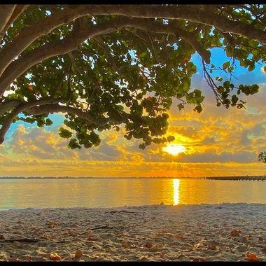 Indian Riverside Park Sunrise 3-25-21  a