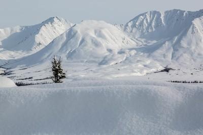 Mountain Range Alaska